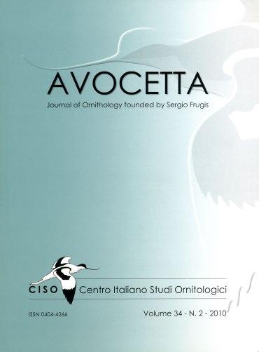 Copertina-2-2010