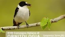 XVIII Convegno Italiano di Ornitologia
